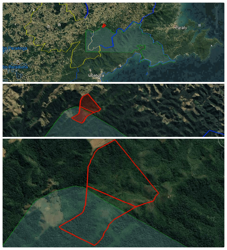 areas floresta grupo ab areias